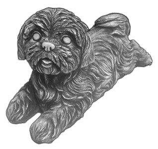 Labrador (Small), Shih Tzu ...